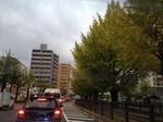 image/2011-11-09T19:45:10-1.JPG