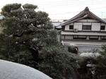 image/2011-12-26T21:08:46-1.JPG