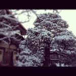 image/2012-02-18T22:58:57-1.JPG