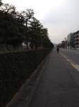 image/2013-02-17T23:14:18-1.JPG