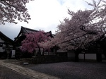 image/2013-04-03T20:21:30-1.JPG