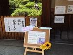 image/2014-06-25T22:17:51-1.JPG